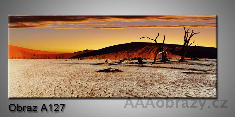 Moderní obraz 1D na plátně 150x70cm Panorama A127