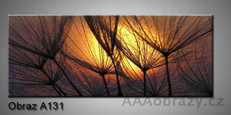 Moderní obraz 1D na plátně 150x70cm Panorama A131