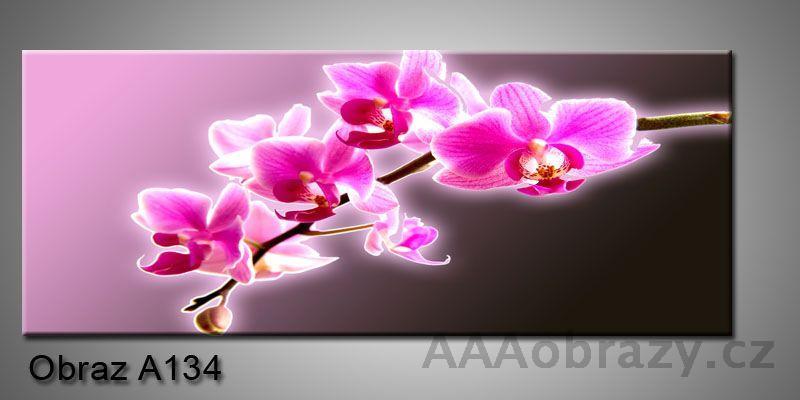Moderní obraz 1D na plátně 150x70cm Panorama A134