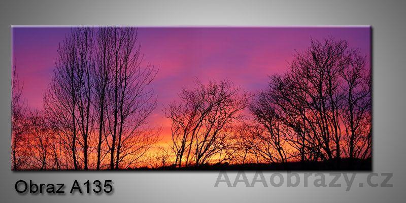 Moderní obraz 1D na plátně 150x70cm Panorama A135