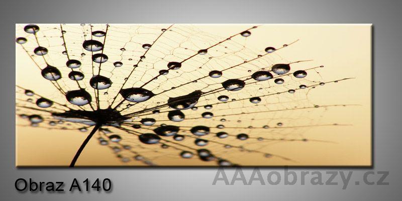 Moderní obraz 1D na plátně 150x70cm Panorama A140