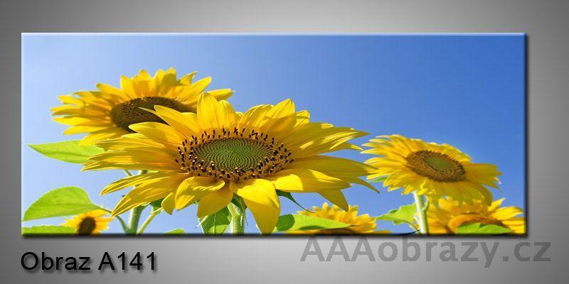 Moderní obraz 1D na plátně 150x70cm Panorama A141