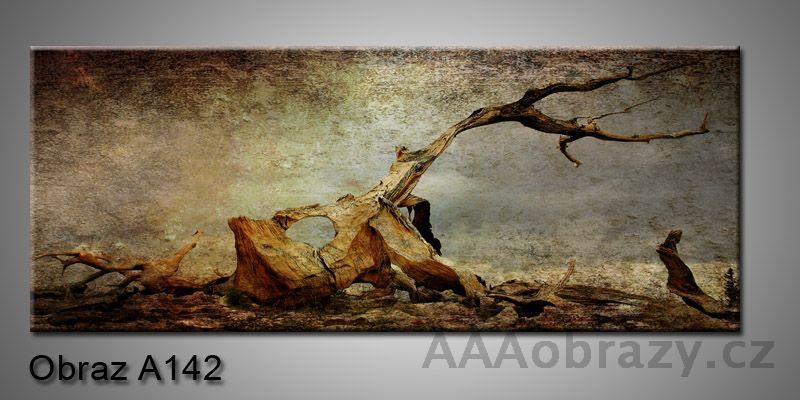 Moderní obraz 1D na plátně 150x70cm Panorama A142