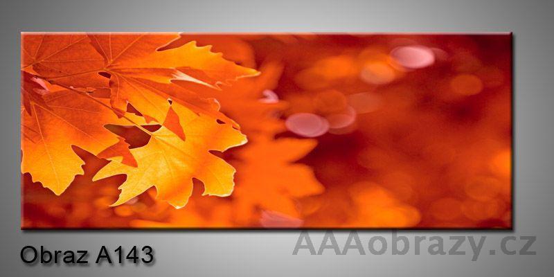 Moderní obraz 1D na plátně 150x70cm Panorama A143