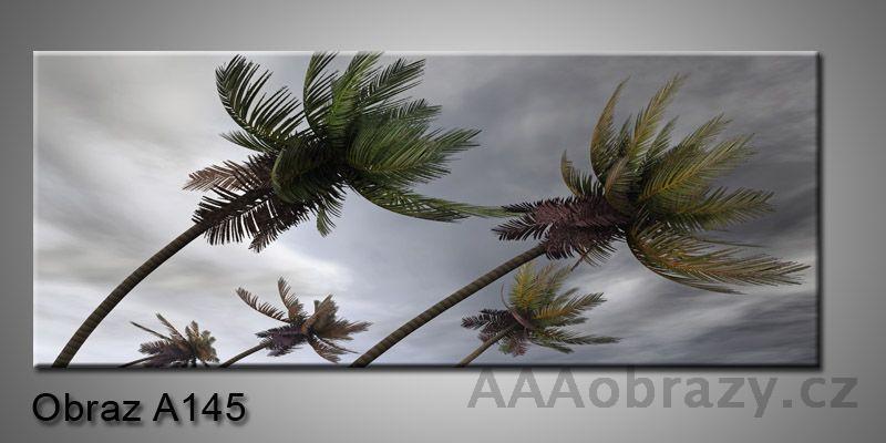 Moderní obraz 1D na plátně 150x70cm Panorama A145