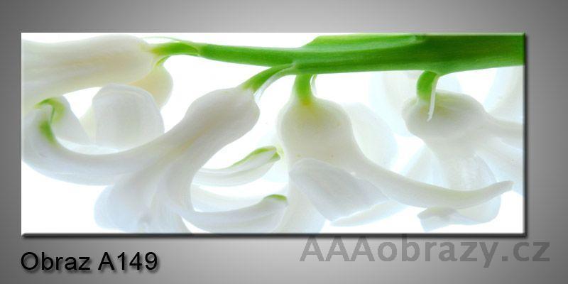 Moderní obraz 1D na plátně 150x70cm Panorama A149