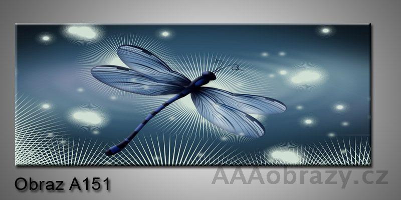 Moderní obraz 1D na plátně 150x70cm Panorama A151