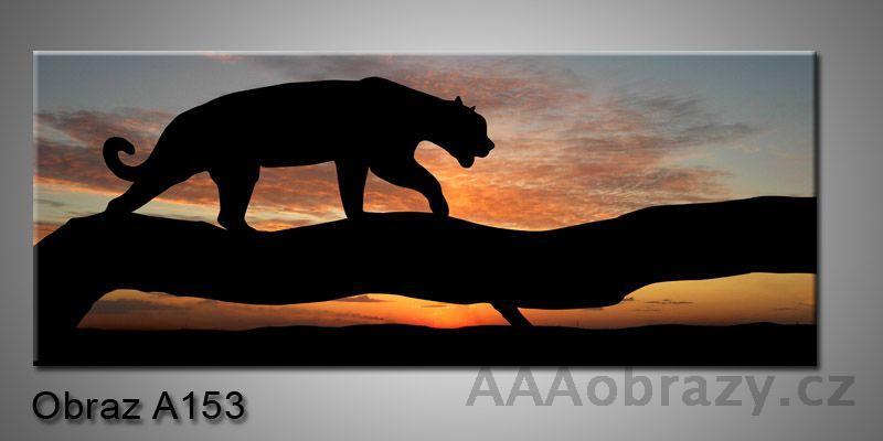 Moderní obraz 1D na plátně 150x70cm Panorama A153