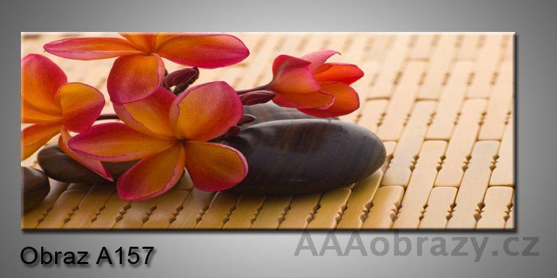 Moderní obraz 1D na plátně 150x70cm Panorama A157