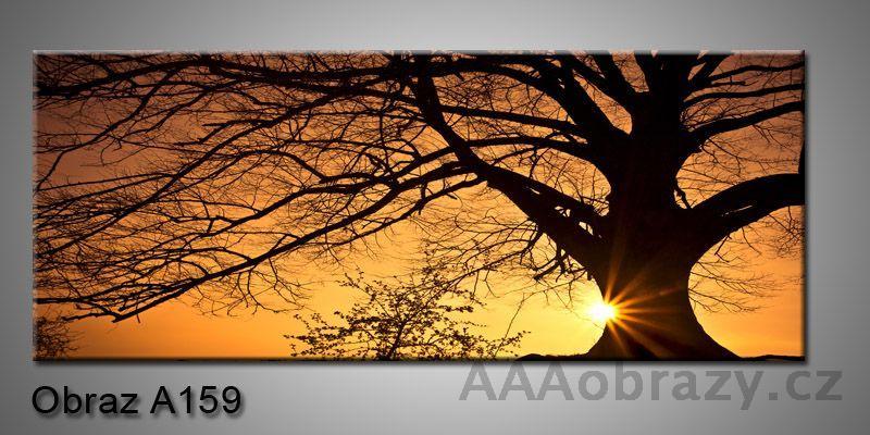 Moderní obraz 1D na plátně 150x70cm Panorama A159