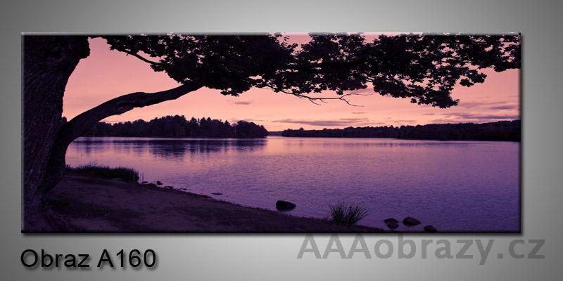 Moderní obraz 1D na plátně 150x70cm Panorama A160