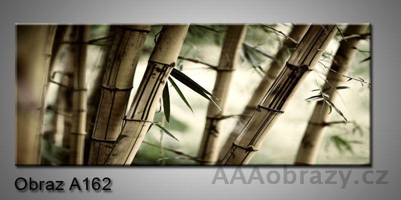 Moderní obraz 1D na plátně 150x70cm Panorama A162