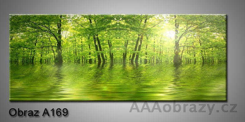 Moderní obraz 1D na plátně 150x70cm Panorama A169