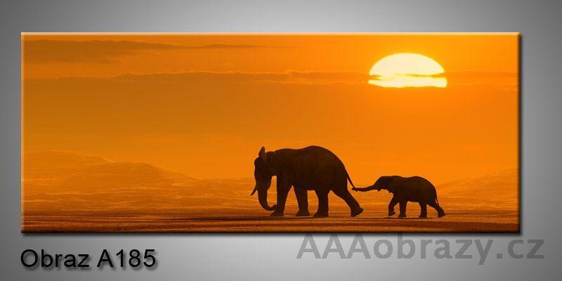 Moderní obraz 1D na plátně 150x70cm Panorama A185