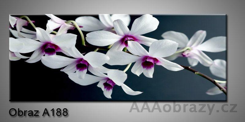 Moderní obraz 1D na plátně 150x70cm Panorama A188