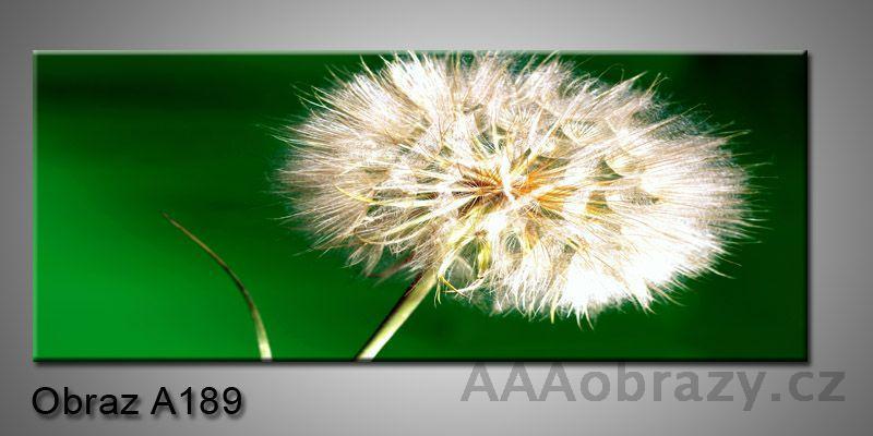 Moderní obraz 1D na plátně 150x70cm Panorama A189