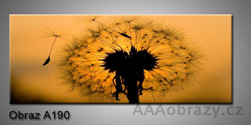 Moderní obraz 1D na plátně 150x70cm Panorama A190