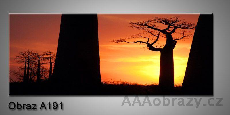 Moderní obraz 1D na plátně 150x70cm Panorama A191
