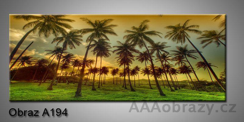 Moderní obraz 1D na plátně 150x70cm Panorama A194