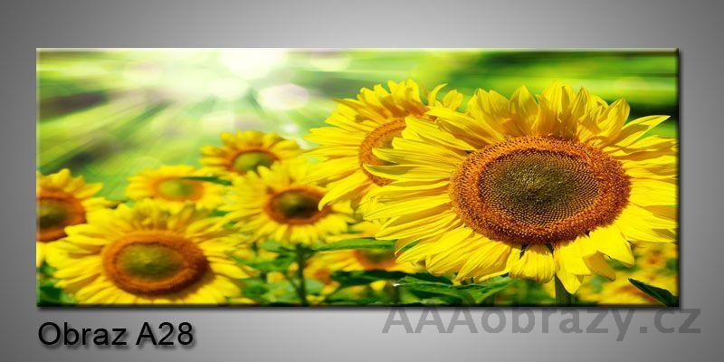Moderní obraz 1D na plátně 150x70cm Panorama A28