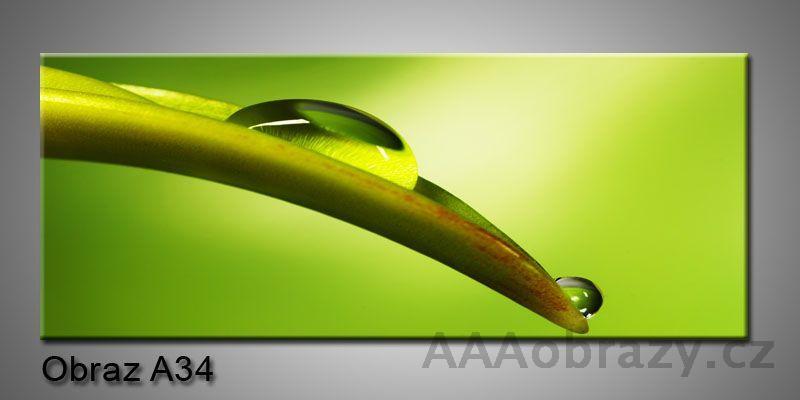 Moderní obraz 1D na plátně 150x70cm Panorama A34