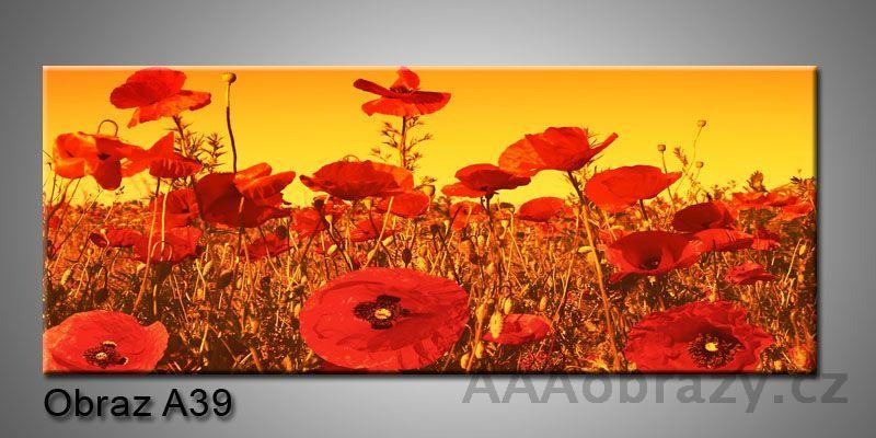 Moderní obraz 1D na plátně 150x70cm Panorama A39