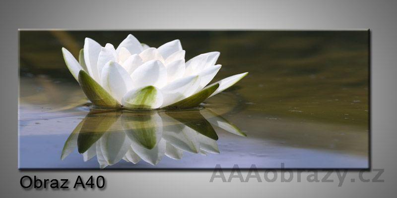 Moderní obraz 1D na plátně 150x70cm Panorama A40
