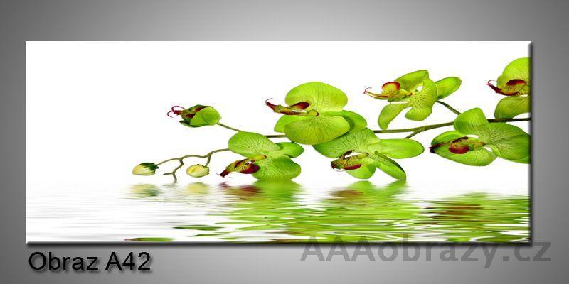 Moderní obraz 1D na plátně 150x70cm Panorama A42