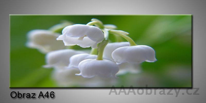 Moderní obraz 1D na plátně 150x70cm Panorama A46