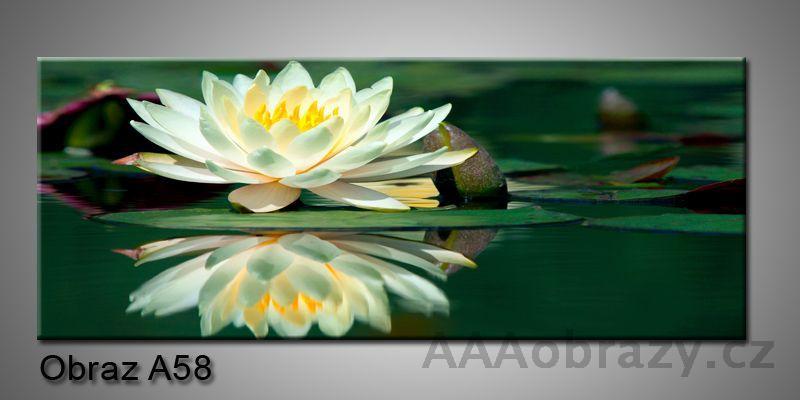 Moderní obraz 1D na plátně 150x70cm Panorama A58