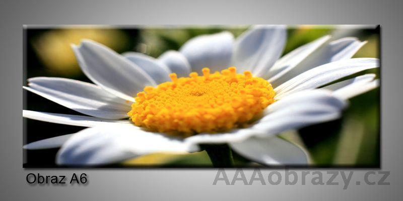 Moderní obraz 1D na plátně 150x70cm Panorama A6