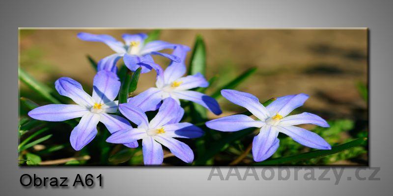 Moderní obraz 1D na plátně 150x70cm Panorama A61