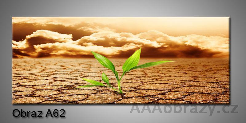 Moderní obraz 1D na plátně 150x70cm Panorama A62