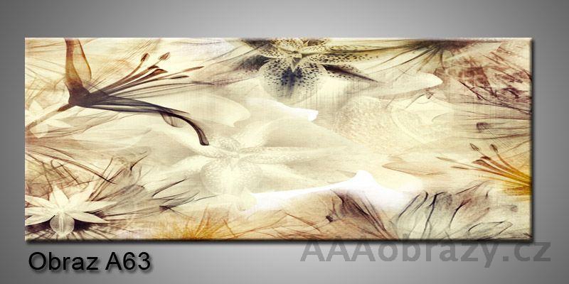 Moderní obraz 1D na plátně 150x70cm Panorama A63