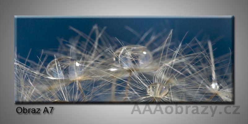Moderní obraz 1D na plátně 150x70cm Panorama A7
