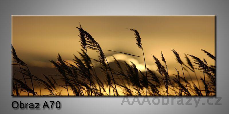 Moderní obraz 1D na plátně 150x70cm Panorama A70