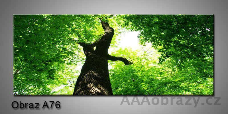 Moderní obraz 1D na plátně 150x70cm Panorama A76