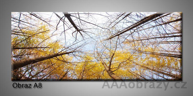 Moderní obraz 1D na plátně 150x70cm Panorama A8
