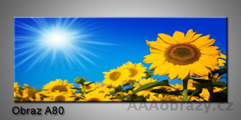 Moderní obraz 1D na plátně 150x70cm Panorama A80