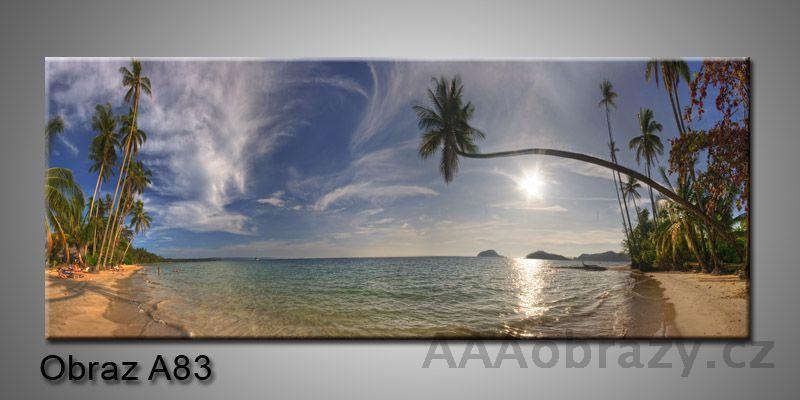 Moderní obraz 1D na plátně 150x70cm Panorama A83