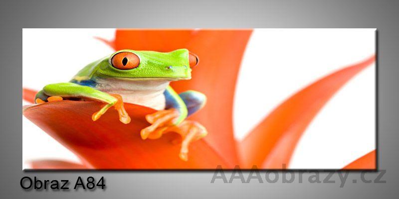 Moderní obraz 1D na plátně 150x70cm Panorama A84