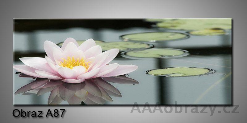 Moderní obraz 1D na plátně 150x70cm Panorama A87