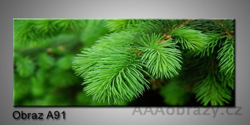 Moderní obraz 1D na plátně 150x70cm Panorama A91