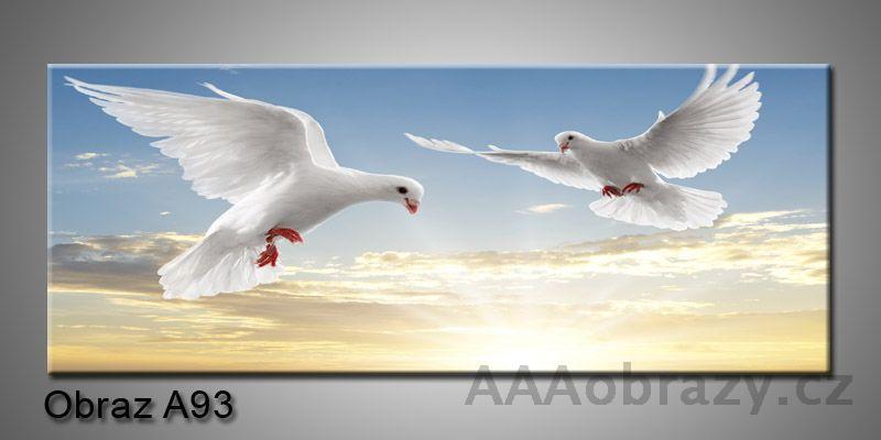 Moderní obraz 1D na plátně 150x70cm Panorama A93