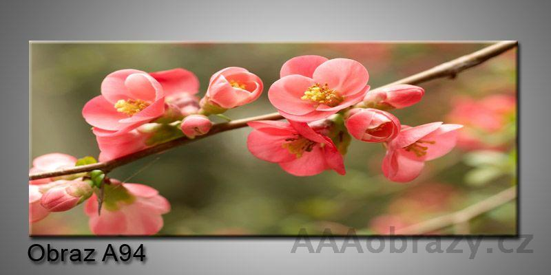 Moderní obraz 1D na plátně 150x70cm Panorama A94