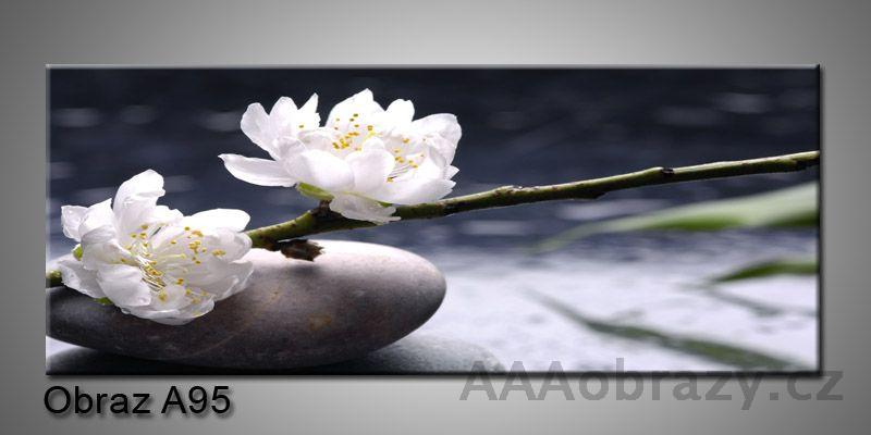 Moderní obraz 1D na plátně 150x70cm Panorama A95