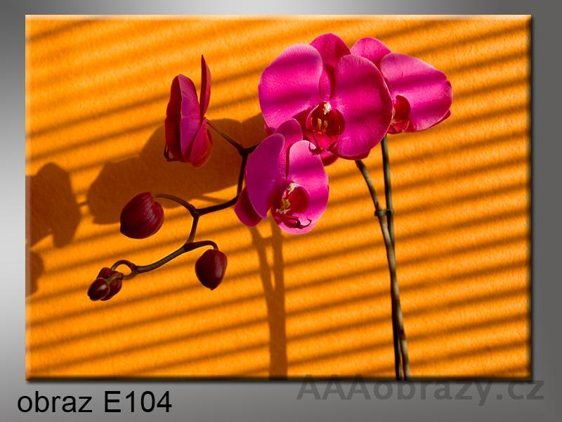 Moderní obraz do bytu 1D 70x50cm E-104