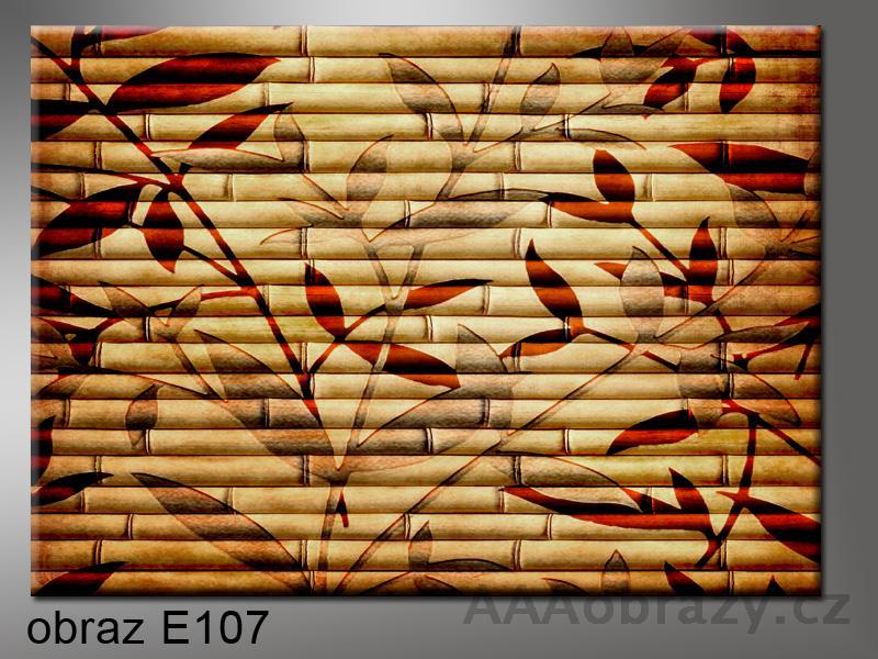 Moderní obraz do bytu 1D 70x50cm E-107