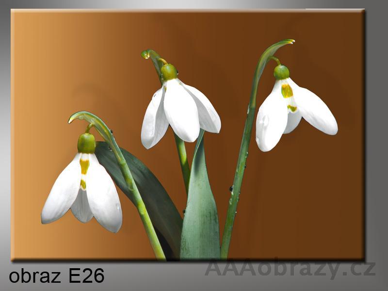 Moderní obraz do bytu 1D 70x50cm E-26