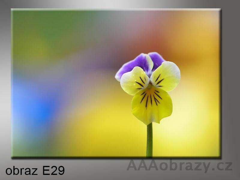 Moderní obraz do bytu 1D 70x50cm E-29